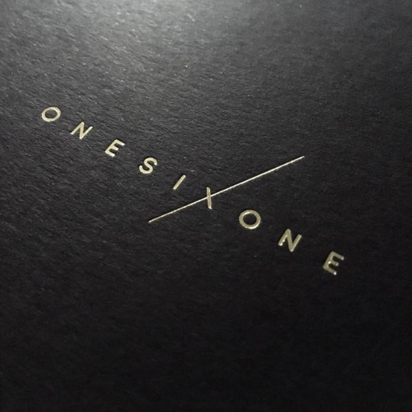 onesixone graphic design diseño grafico brand branding identity identidad estudiosavage